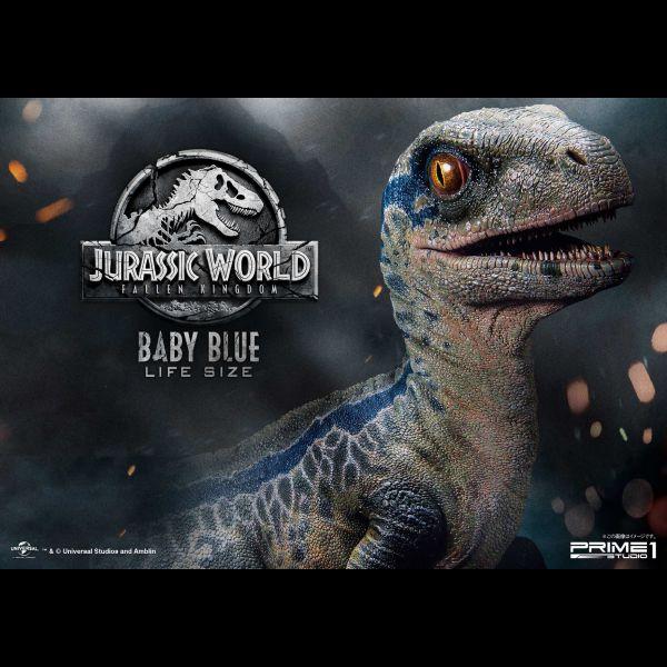 baby blue raptor life size