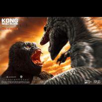 Kong vs Crawler